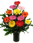 colorful flowers, sending pretty floral arrangements